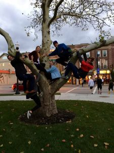 Challenge: your team must climb a tree