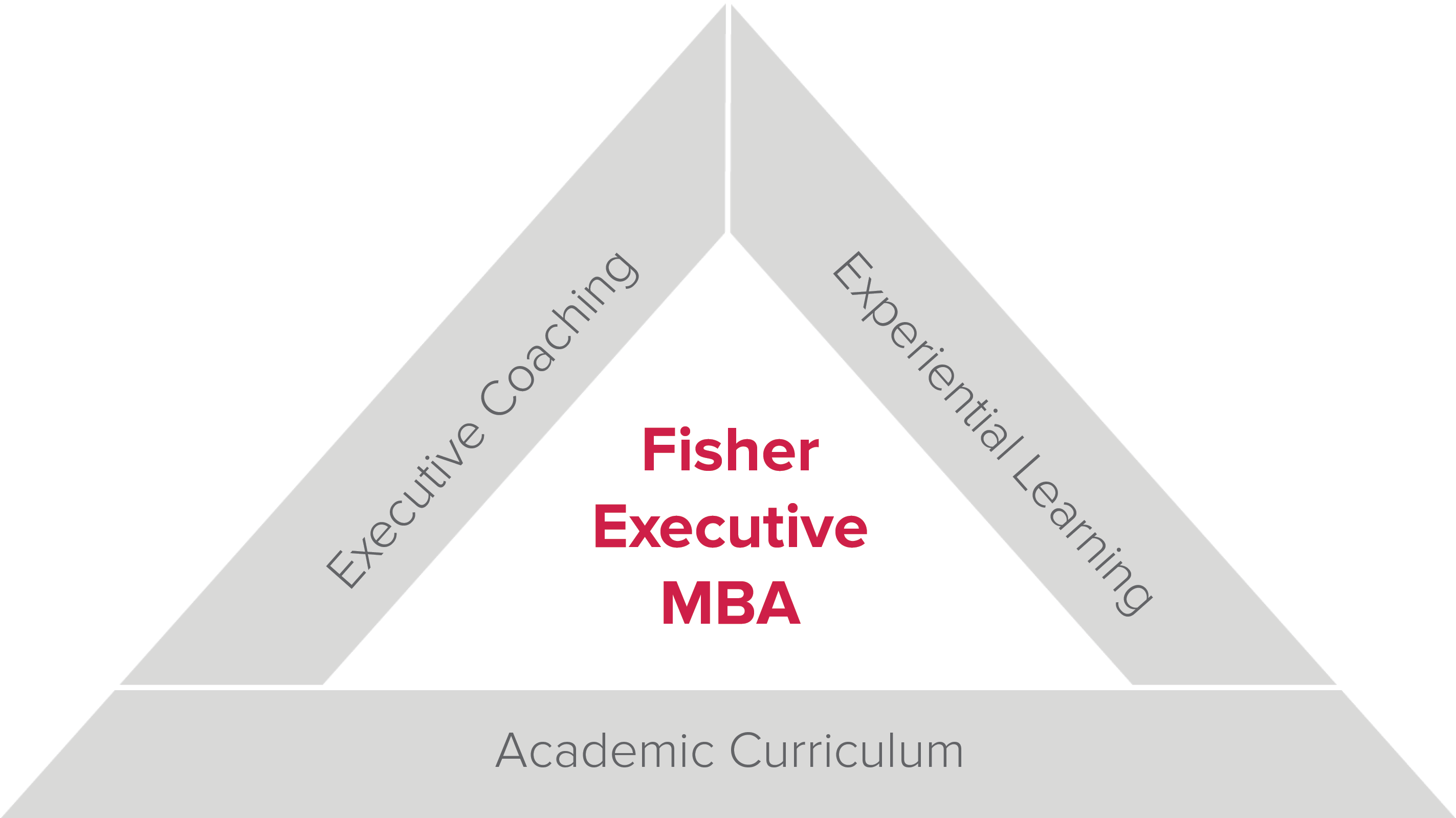 Fisher Executive MBA triad